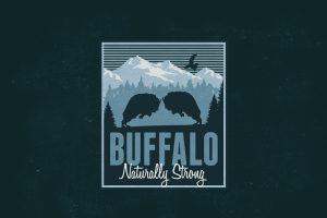 Distressed Buffalo Logo Mockup 3