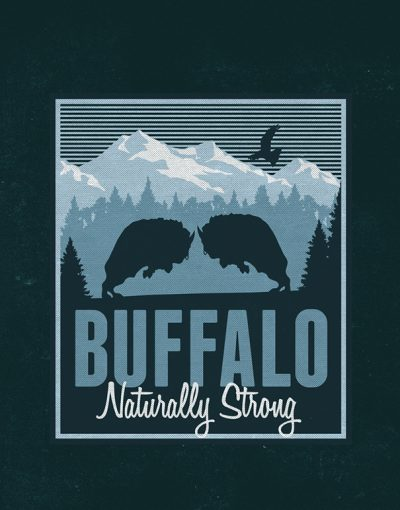 Distressed Buffalo Logo Mockup 3